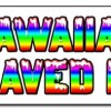 HAWAIIAN SHAVED ICE BANNER SIGN hawaian cart stand icee icy signs