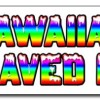 48″ HAWAIIAN SHAVED ICE DECAL sticker hawaian cart stand icee icy